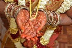 印地安婚礼-举行Thali 库存照片