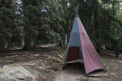 印地安小屋在森林 库存图片