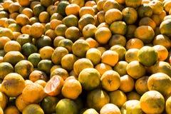 印地安桔子在夏天 库存照片