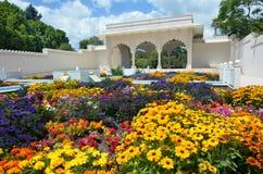 印地安炭灰Bagh庭院在汉密尔顿花园-新西兰 库存图片