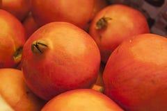印地安石榴果子 库存照片