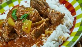 印地安羊羔咖喱 免版税库存图片