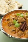 印地安膳食食物咖喱羊羔罗根Josh Naan面包垂直 库存照片