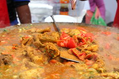 印地安街道食物:鸡肉菜肴 库存图片
