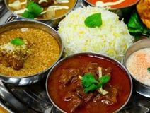 印地安非素食主义者膳食 库存图片