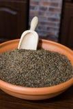 印地安香芹籽 免版税库存照片