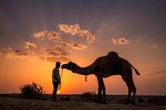 印地安骆驼日落 库存照片