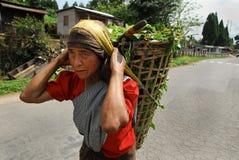 印度东北村庄妇女 免版税库存照片
