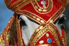印度公主 免版税库存照片