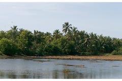 印度喀拉拉湖veli 免版税库存照片