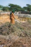 印度妇女赛跑 免版税库存照片