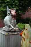印度寺庙 库存照片