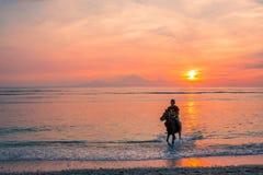 印度尼西亚人骑马在日落的水中 库存图片