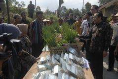 印度尼西亚农业出口 图库摄影