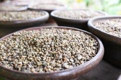 印度尼西亚咖啡豆 免版税库存照片
