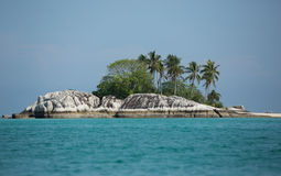 印度尼西亚,有棕榈树的小海岛 免版税图库摄影