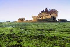 印度尼西亚,巴厘岛, Tanah全部寺庙 免版税库存图片