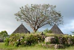 印度尼西亚manggarai传统村庄 库存图片