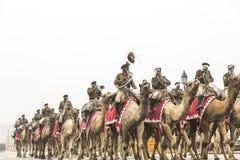 印度庆祝1月26日的第67共和国天 免版税库存图片