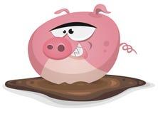 印度桃花心木猪洗涤在池塘巴恩 库存图片