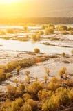 印度河 图库摄影