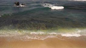 印度洋水洗涤黄色含沙岸 影视素材