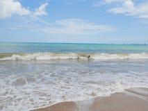 印度洋,海滩在巴厘岛,美丽的海岸 库存图片