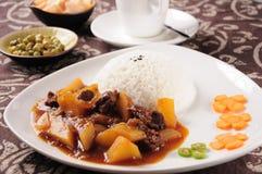 印度牛肉咖喱和米 库存图片