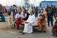 印度的节日 库存图片