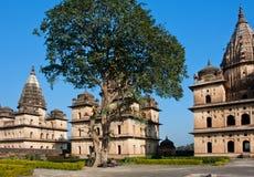 印度的著名历史站点 图库摄影