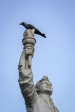 印度自由战斗机象 库存图片