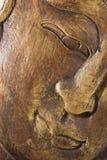 印度象温泉木图  图库摄影