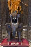 印度象温泉木图  免版税图库摄影