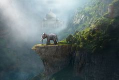 印度象,泰姬陵,印度,幻想风景 免版税图库摄影
