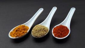 印度香料姜黄粉末香菜粉末和红色辣椒粉 免版税库存图片