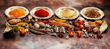 印度香料,辣和在碗的调味料 免版税库存照片