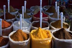 印度香料 库存照片