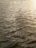 印度洋亮光星期日纹理水 库存照片