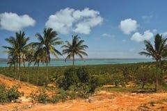 印度洋,莫桑比克海峡的海岸 免版税库存照片