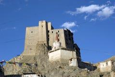 印度ladakh leh宫殿 库存照片