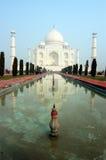 印度mahal taj 库存照片