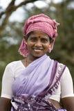 印度nadu泰米尔人妇女 库存图片