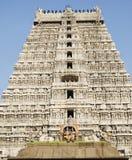 印度nadu shiva泰米尔人寺庙thiruvannamalai 免版税库存图片