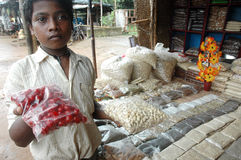 印度orissa场面状态街道 库存照片