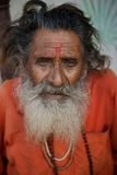 印度Sadhu 免版税库存图片