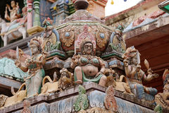 印度trichy nadu的泰米尔语 免版税库存图片