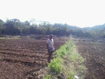 印第安农夫 免版税库存照片