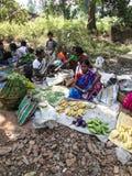印第安出售蔬菜妇女 免版税库存照片