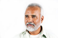 印第安前辈 库存照片