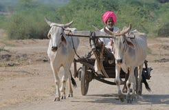 印第安场面村庄 免版税图库摄影